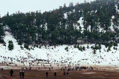 在冰的一冷的美好的多雪的天在冬天 免版税库存照片