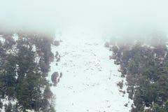 在冰的一冷的美好的多雪的天在冬天 免版税库存图片