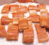 在冰的三文鱼 免版税库存图片