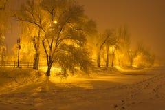 在冰的冬天树 图库摄影