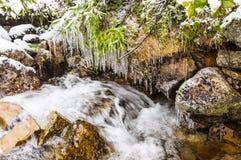 在冰的小河 库存照片