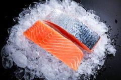 在冰的新鲜的未加工的两条三文鱼内圆角 库存照片