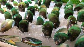在冰的新鲜的未加工的有机淡菜在超级市场 海洋海鲜 聚会所 股票视频
