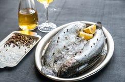 在冰的新鲜的鳟鱼在葡萄酒金属化盘子 免版税图库摄影
