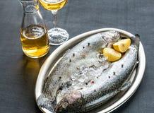 在冰的新鲜的鳟鱼在葡萄酒金属化盘子 图库摄影