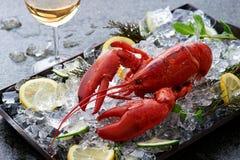 在冰的新鲜的龙虾 免版税库存图片