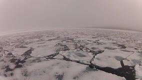 在冰的旅行,北极 股票视频