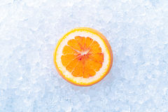 在冰的桔子 库存图片