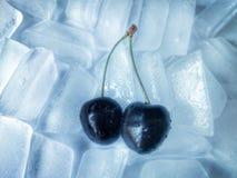 在冰的樱桃 免版税库存图片