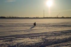 在冰的步行 库存照片