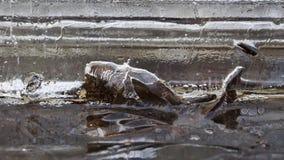 在冰的气泡融解 免版税库存照片