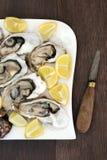 在冰的牡蛎用柠檬 免版税库存图片