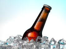 在冰的瓶 库存照片