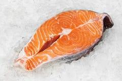 在冰的红色鱼 免版税图库摄影