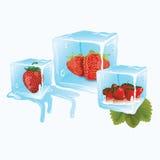 在冰的草莓 免版税库存图片