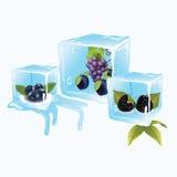 在冰的蓝莓 免版税库存图片