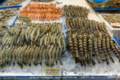 在冰的虾 免版税库存图片