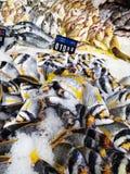 在冰的鱼在柜台 免版税库存照片