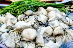 在冰的鲜美牡蛎吃与金合欢pennata 泰国在塑料袋的街道food.curry装箱 免版税库存照片