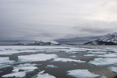 在冰的破冰船 库存图片