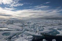 在冰的破冰船 库存照片