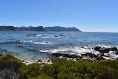 在冰砾的美妙的风景靠岸与许多公驴企鹅在开普敦,南非 库存图片
