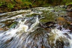 在冰砾绿色青苔和急流的冲的小河 库存照片