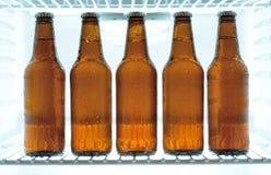 在冰箱的啤酒瓶 免版税库存照片