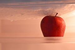 在冰箱的苹果计算机 免版税图库摄影