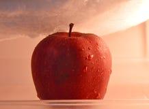 在冰箱的苹果计算机 免版税库存图片