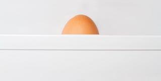 在冰箱的鸡蛋 图库摄影