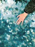在冰结冰的壳 免版税图库摄影