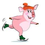 在冰鞋的猪。 免版税库存图片