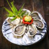 在冰食谱的牡蛎用柠檬 库存图片