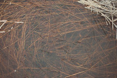 在冰-年迈的照片的冻结的抽象纹理 库存图片