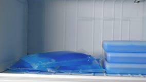 在冷冻机的冰袋 股票视频