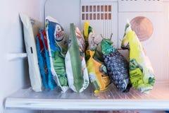 在冷冻机的冷冻食品 产品为在冰箱的冬天 免版税库存照片