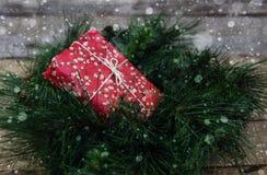 在冷杉早午餐的圣诞节礼物 图库摄影