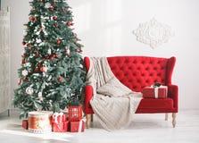 在冷杉木下的当前箱子在与红色沙发的内部 库存照片