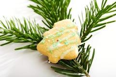 在冷杉枝杈的树型圣诞节曲奇饼 免版税库存图片