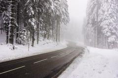 在冷漠和有雾的天气的路曲线 免版税库存图片