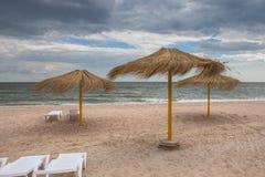 在冷的海附近的冷的夏天,顿涅茨克地区,乌克兰 免版税库存照片