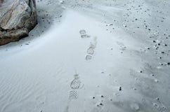 在冷的白色结冰的海滩的人的鞋子印刷品 库存图片