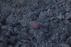 在冷却的熔岩AA 免版税库存照片