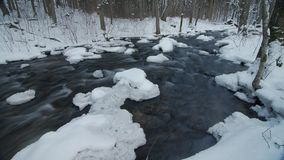在冻小河的水 斯诺伊河在森林里在冬天 影视素材