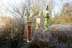 在冻结的冬天期间,与混杂的种子的鸟饲养者在美丽的庭院里 库存照片