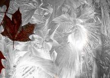 在冻结的背景的摘要叶子 免版税库存图片