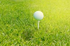 在准备好的发球区域的高尔夫球是射击 免版税库存图片