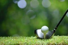 在准备好的绿草的高尔夫球被触击在高尔夫球场 库存照片