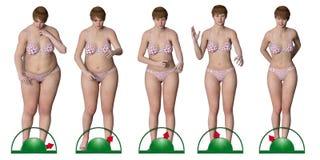 在减肥的等级的女孩序列  库存照片